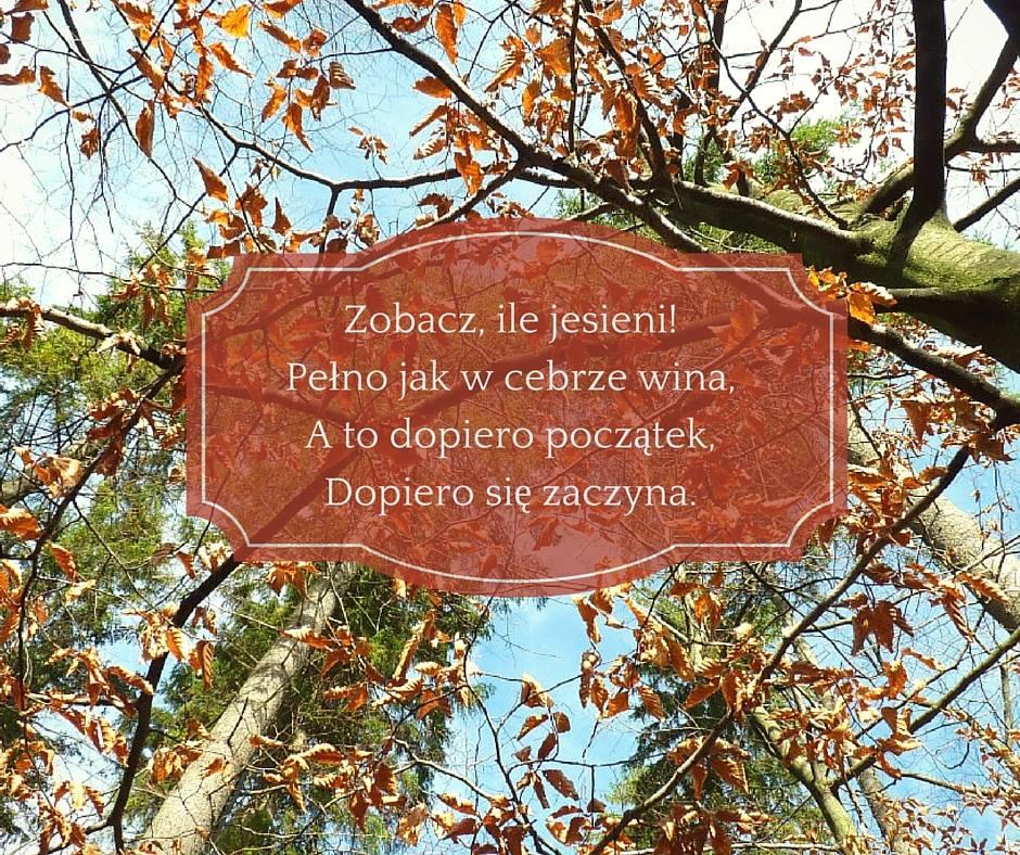 Wiersze Do Recytacji Lekcje Polskiego